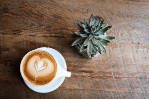 café plante